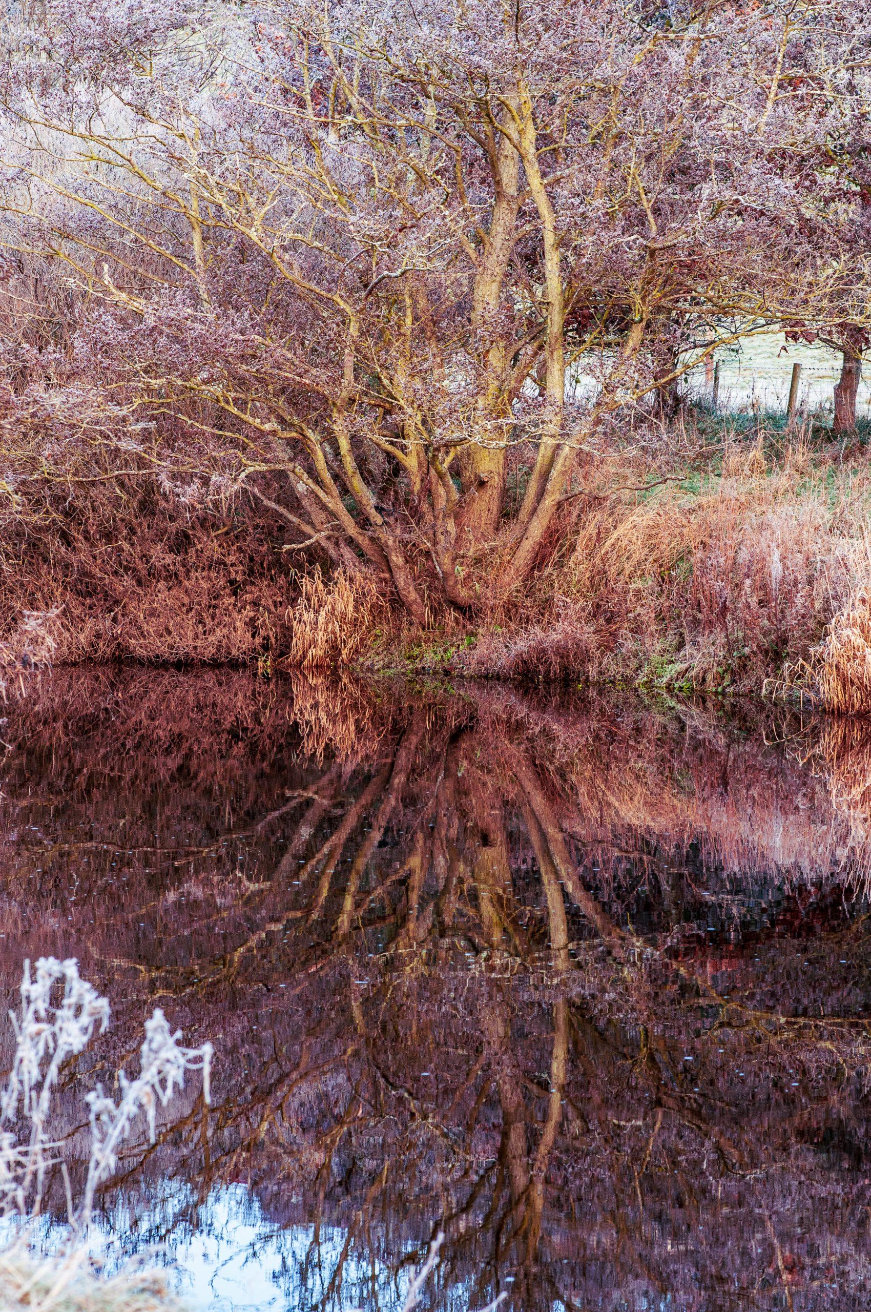 Northumberland Landscape Photographer