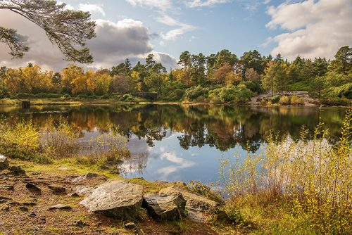 Cragside, Rothbury in Autumn