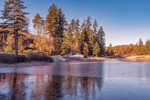 Frozen Lake - Cragside, Rothbury, Northumberland