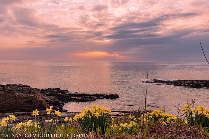 Howick on the beautiful Northumberland Coast