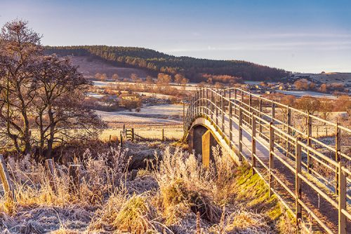 A frosty morning at Ladies Bridge Rothbury