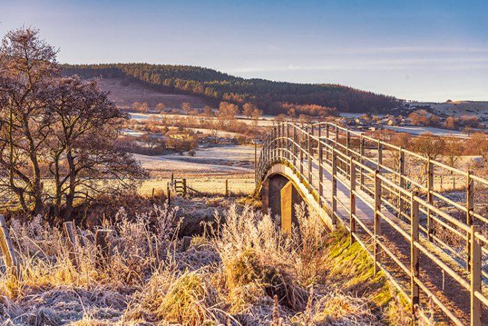 A frosty morning at Ladies Bridge Rothbury
