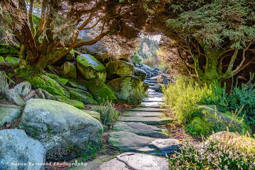 The Rock Garden at Cragside Rothbury