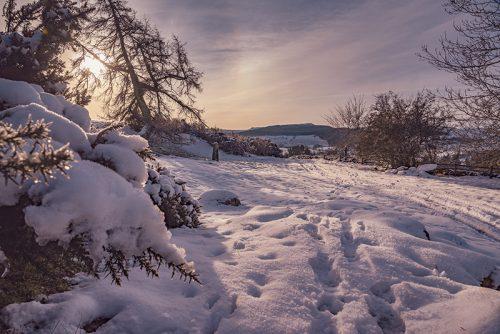 Snow at West Hills Rothbury Northumberland