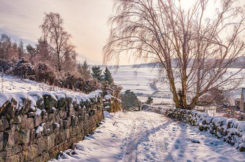 A snowy lane at West Hills Rothbury